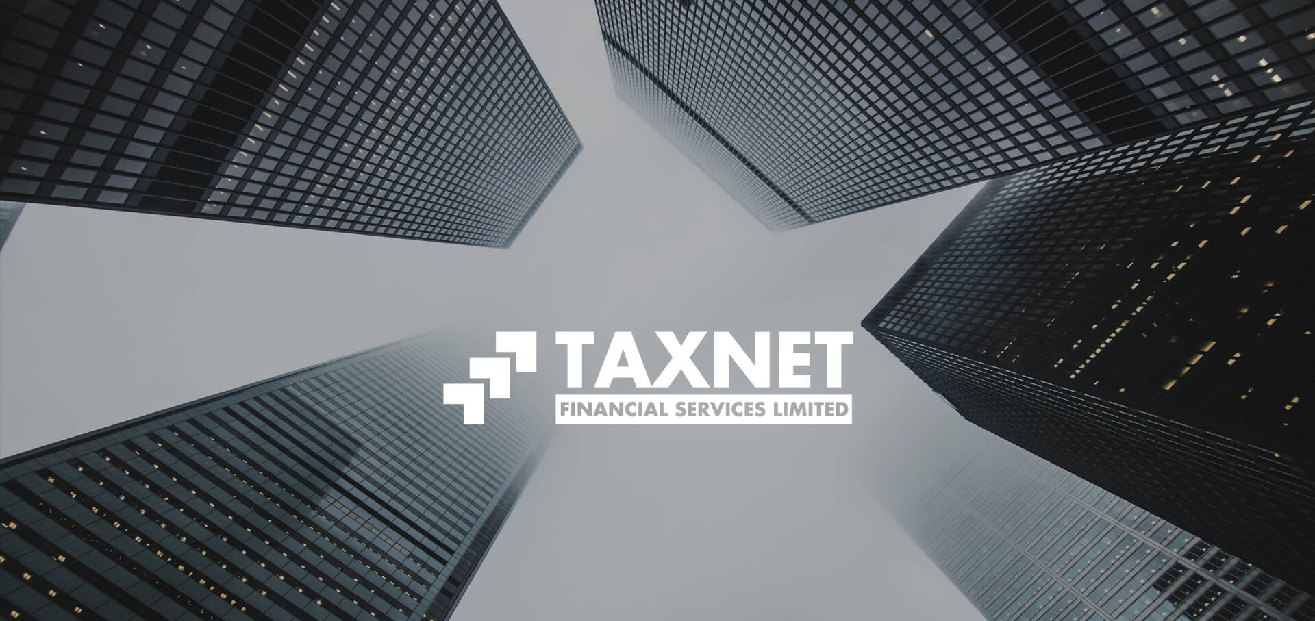 Taxnet Financial services logo banner