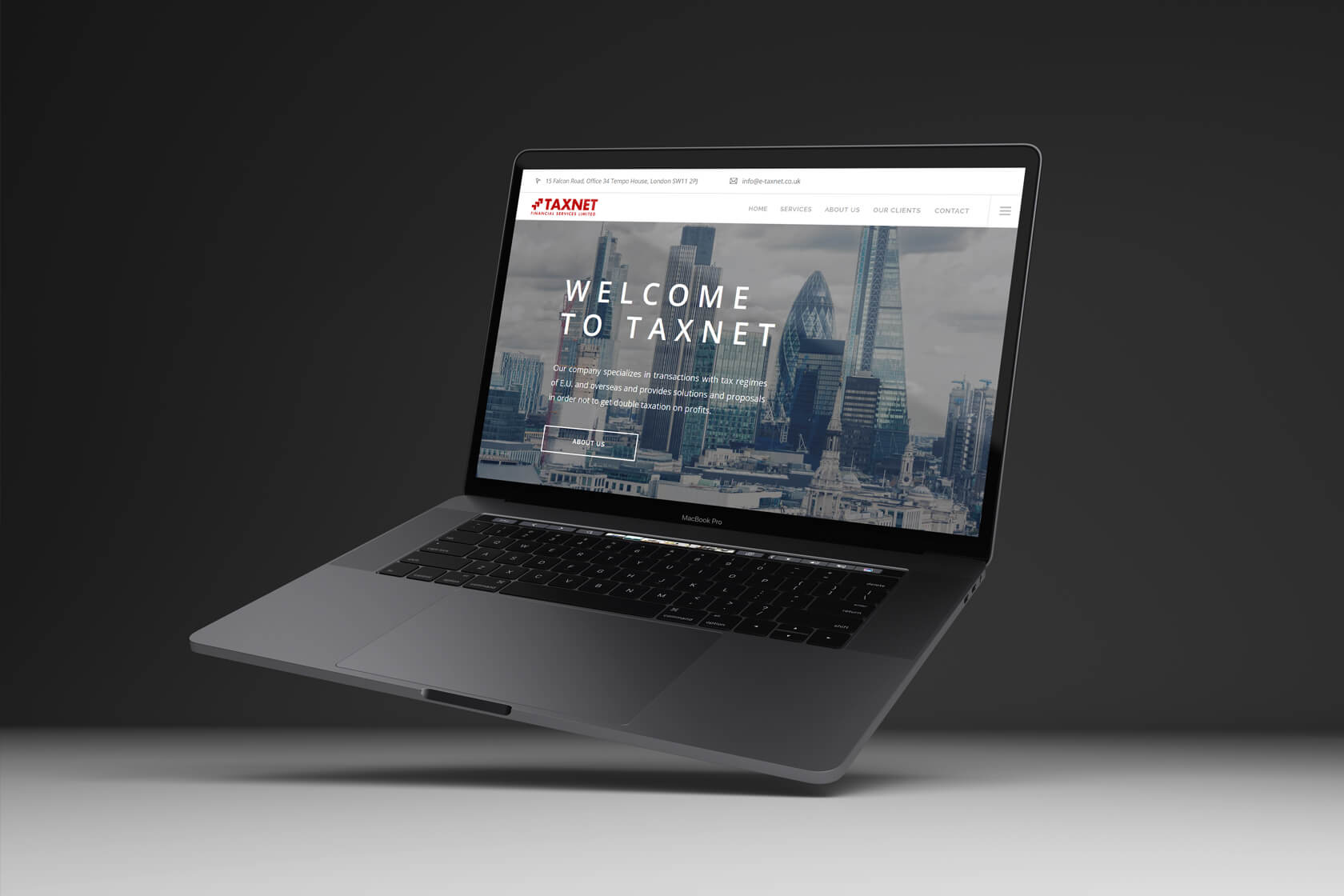 Taxnet Financial services website